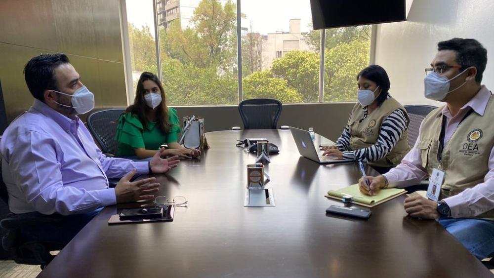 """Misión de OEA en México pide a políticos promover """"un ambiente de paz"""" - OEA Mision elecciones 6 de junio México"""