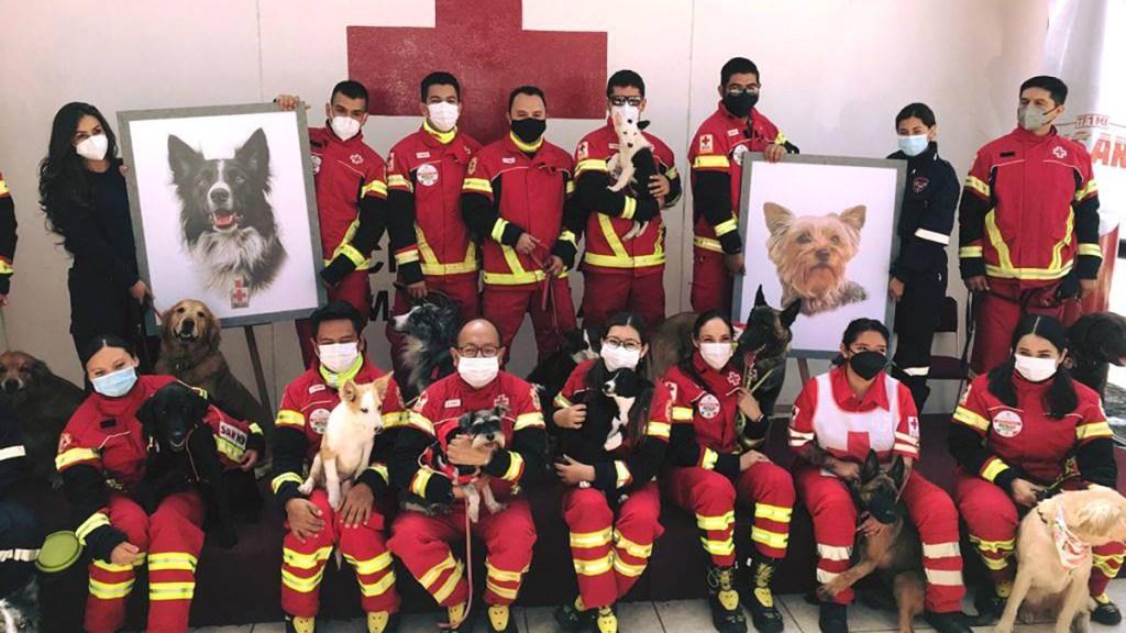 Detienen a hombre que envenenó a perros de la Cruz Roja en Querétaro - Homenaje a Athos y Tango, perros de la Cruz Roja envenenados. Foto de @CruzRojaMx