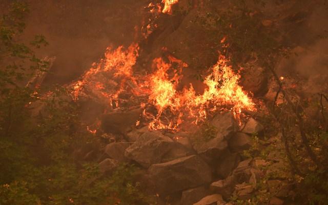 Incendios obligan la evacuación en California de miles de personas - Incendio Dixie en California, EE.UU. Foto de EFE