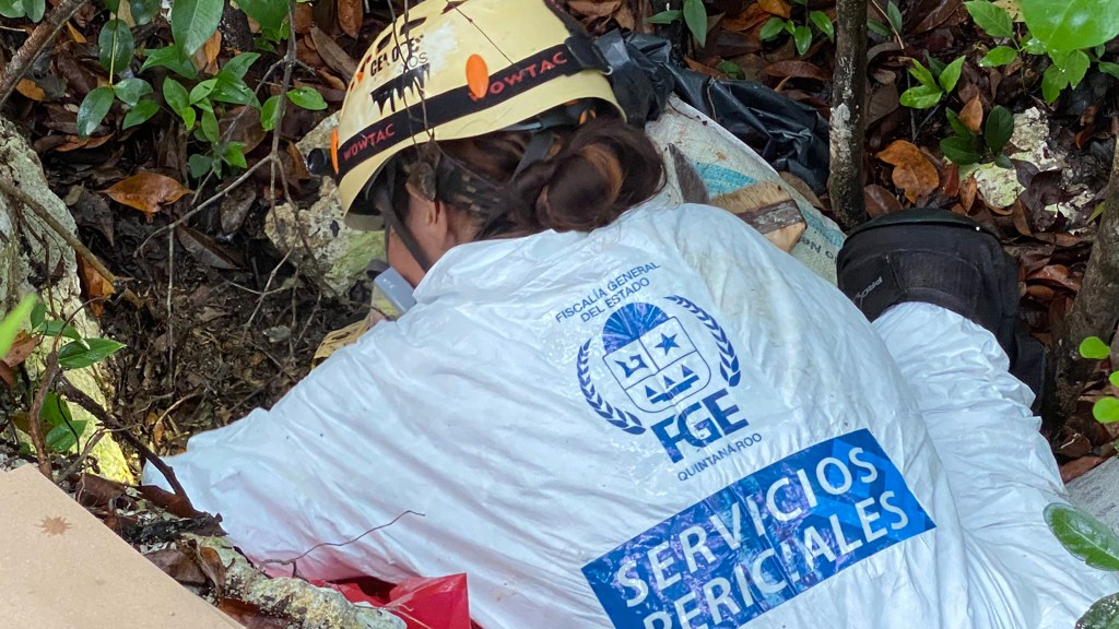 Hallan fosa clandestina en Cancún con restos de varias personas - Peritos de la Fiscalía de Quintana Roo en fosa clandestina en Cancún. Foto de @FGEQuintanaRoo
