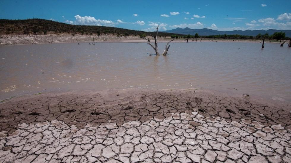 Sequía extrema evidencia falta de políticas públicas sobre el agua - Conagua declara emergencia por sequía