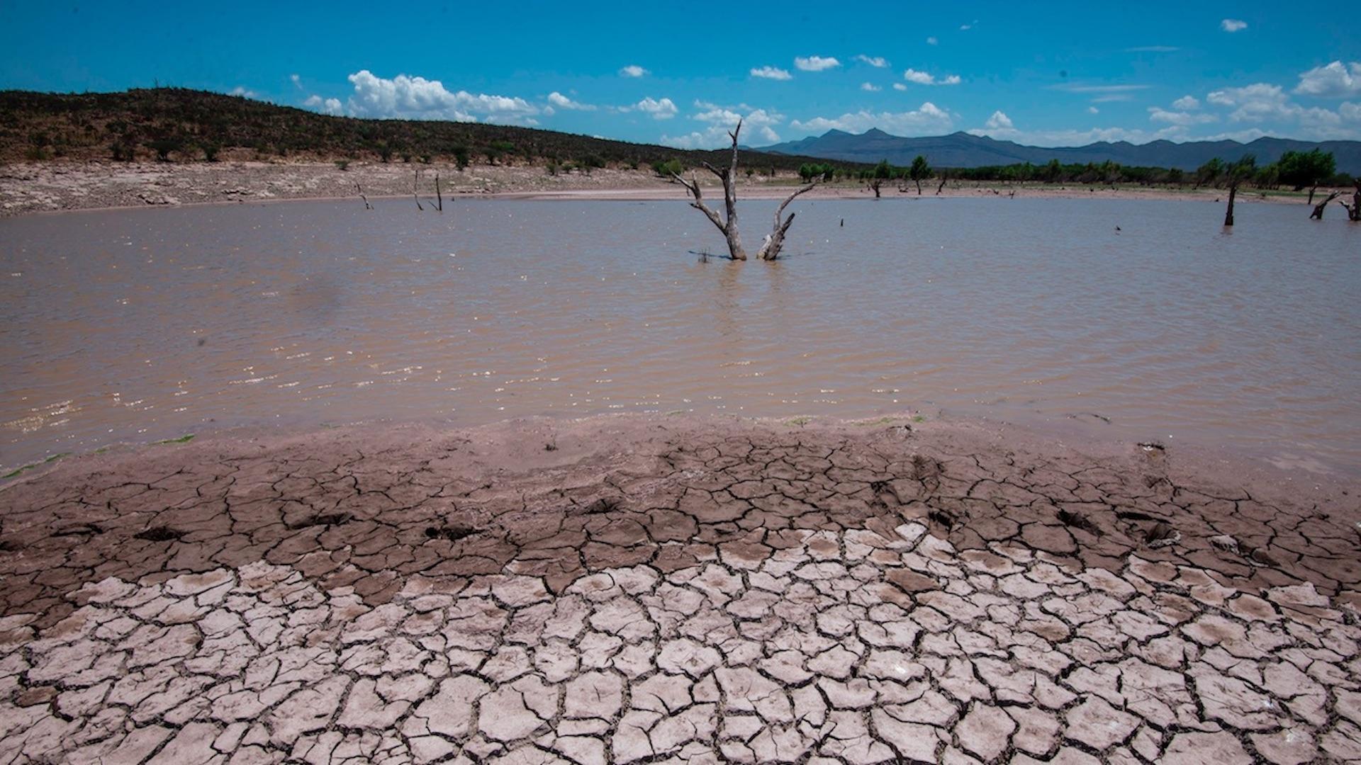 """Conagua declara emergencia por sequía """"severa o extrema"""". Foto de EFE"""