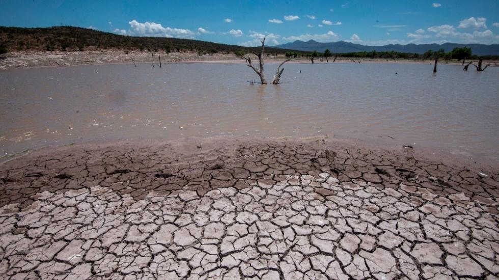 Sequía extrema en México muestra la falta de políticas públicas del agua - sequía extrema México