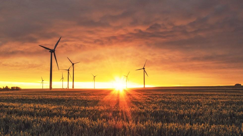 Respuesta a la emergencia climática, clave para formar Gobierno en Alemania - Energía eólica en Alemania