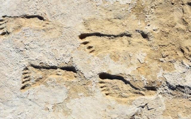 Huellas en Nuevo México revelan presencia humana en América hace 23 mil años - Huellas en Nuevo México revelan presencia humana en América hace 23 mil años. Foto de EFE