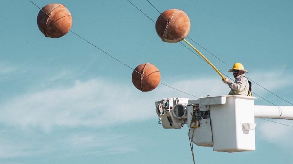 CCE defiende inversiones en el campo eléctrico - CCE defiende inversiones en el campo eléctrico. Foto de CFE