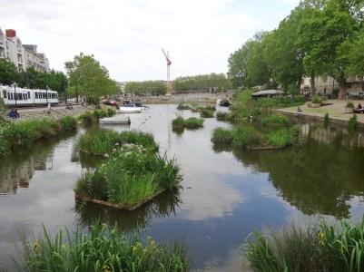 L'Erdre, à Nantes, sur les bords de la Préfecture.