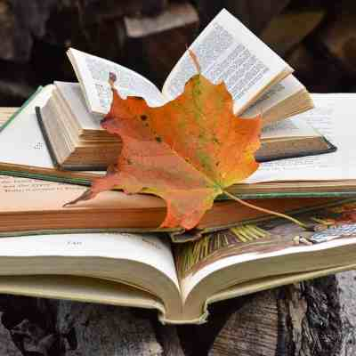 Best Books to Add to your Fall Reading List