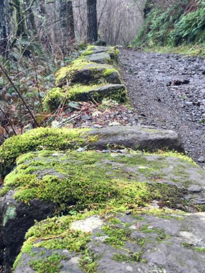 feature_Moss rock