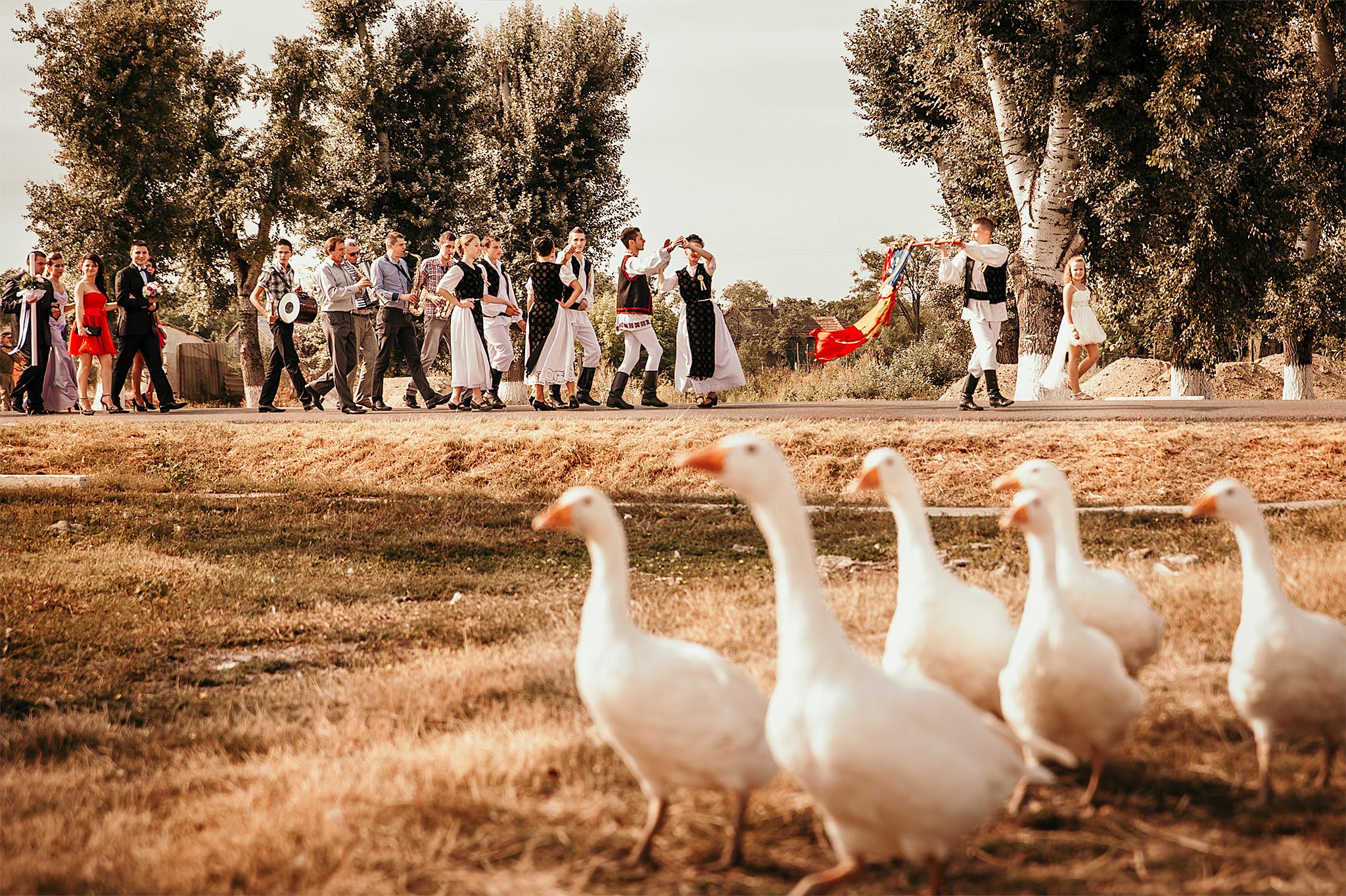 Fotograf nunta romania timisoara lorandquest sat gaste