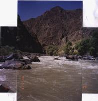 rapids1s