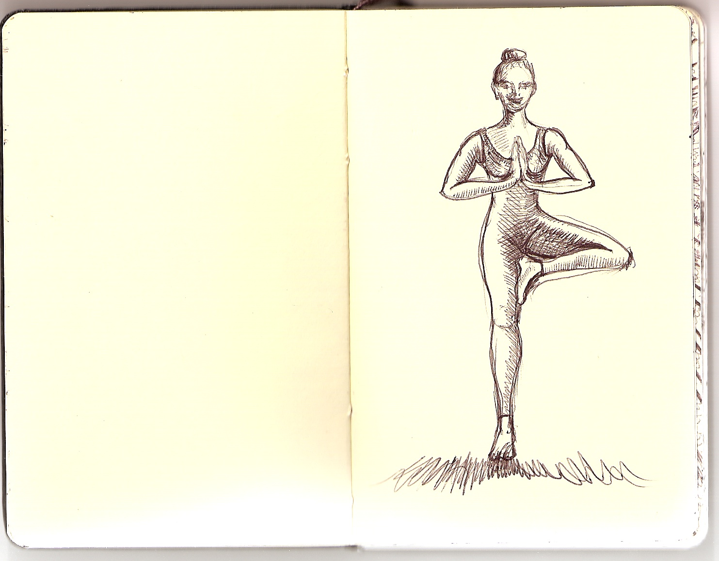 doing tree pose, this is what a person LOOKS like, on the outside, but . . .