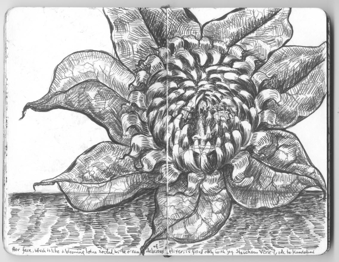 the face of the goddess Kundalini is the thousand-petalled lotus ...