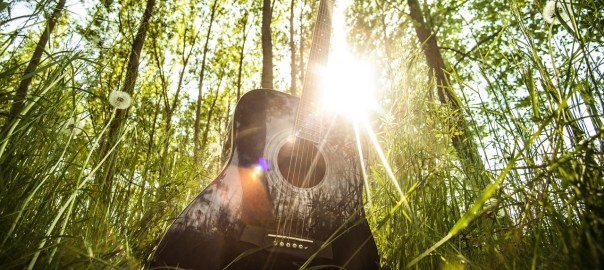 Guitar in the woods and sun