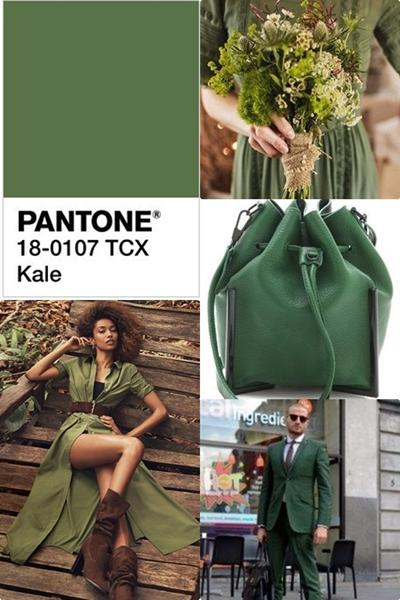 culorile-anului-2017-pantone-kale