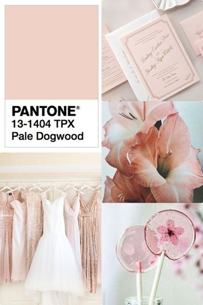 culorile-anului-2017-pantone-pale-dogwood