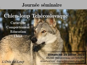 formation-chien-loup-tchecoslovaque