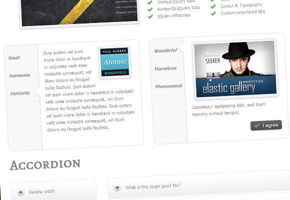 The Best Wordpress Shortcodes Plugin for The Lowest Price Ever - Blog Lorelei Web Design