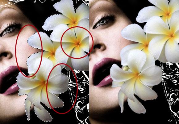 Design a Stunning French Perfume Advert Poster - Photoshop Tutorials Lorelei Web Design