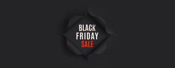 Best of The Best - 5 Black Friday Deals For Web Designers and Developers - Uncategorized Lorelei Web Design
