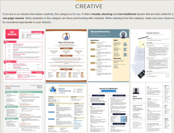 Why every freelance web designer needs a resume and how to make one? - Blog Lorelei Web Design