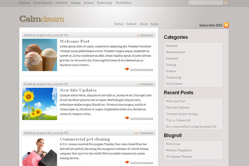 Calm in 40 Free High-Quality WordPress Themes