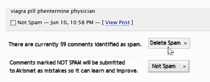 Alternative suggested version of how the bottom of the Akismet Spam Catching panel should look