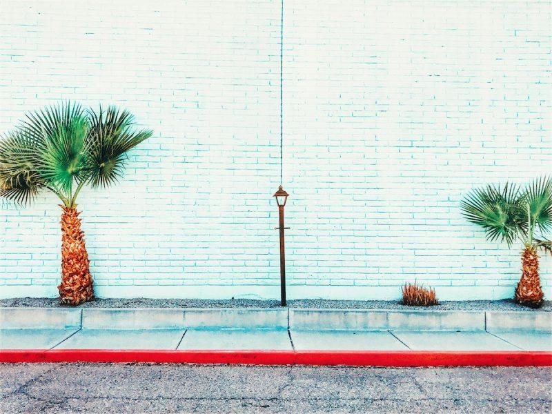 Phoenix white wall