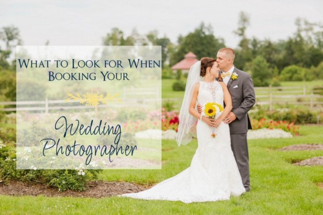 Find Wedding Photographer Outdoor Cleveland Ohio