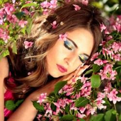 The Beautiful Dream Album By Lorenzo Rocco