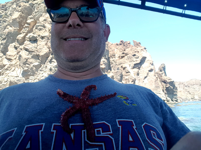 foster-red-sea-star