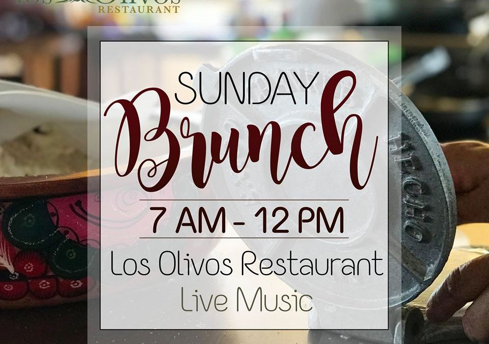 Los Olivos Loreto Mexico Sunday Brunch