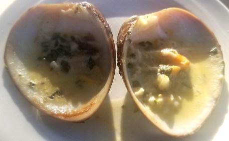 santo-cielo-clams