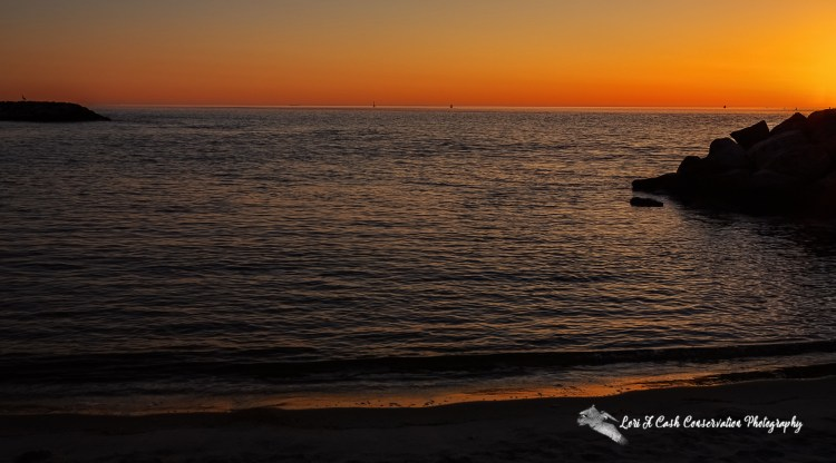 Orange sky reflecting in the water as the sun rises on Fort Monroe Beach on Fort Monroe National Monument in Hampton, Virginia.