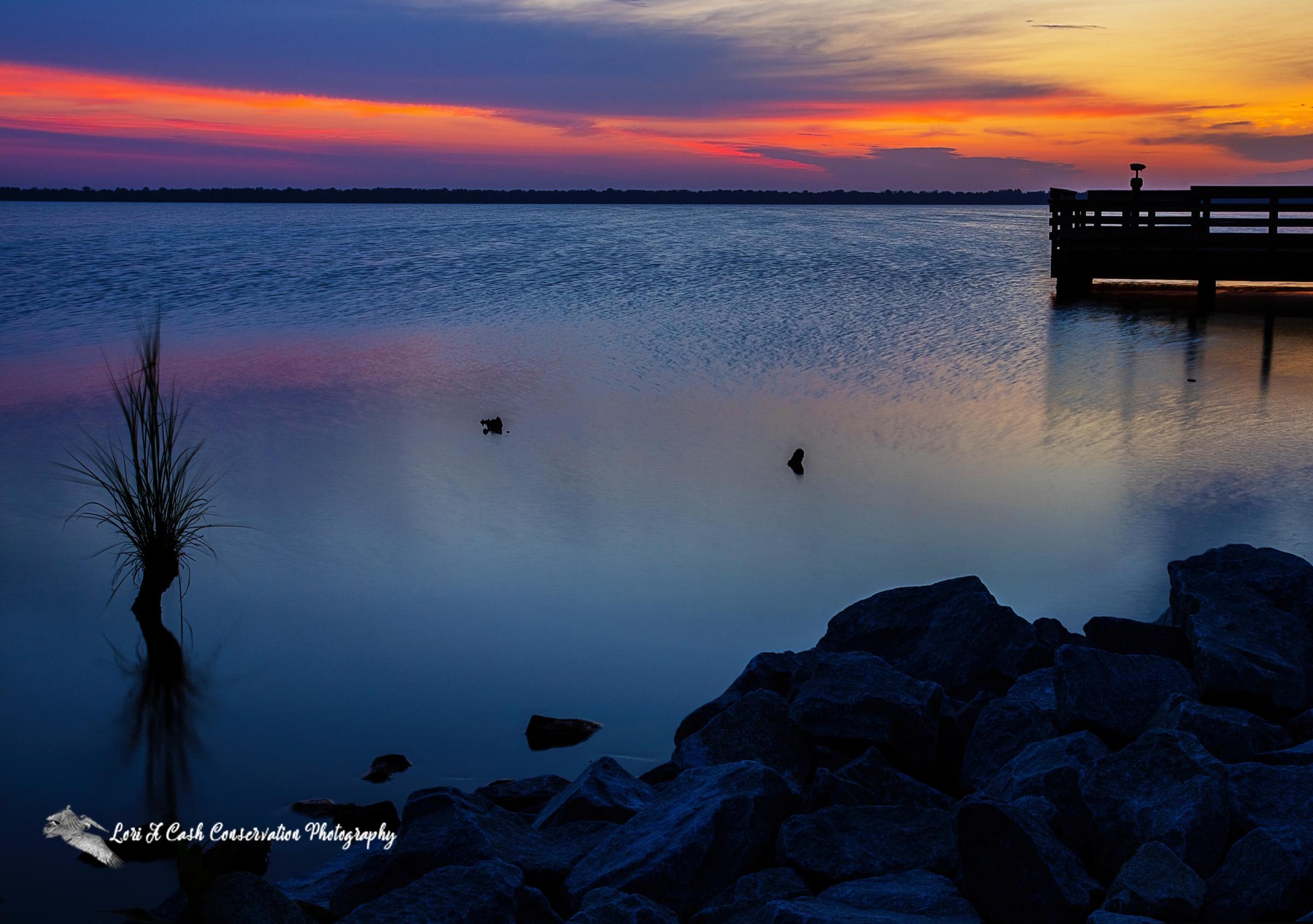 Summer Solstice Sunrise at Lake Drummond in the Great Dismal Swamp National Wildlife Refuge in Suffolk, Virginia.