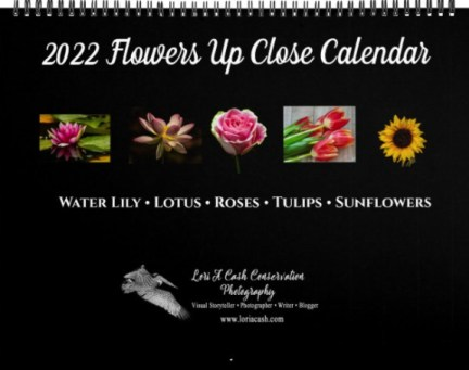 Back Cover of 2022 Flowers Up Close Wall Calendar on Zazzle by Lori A Cash Conservation Photography