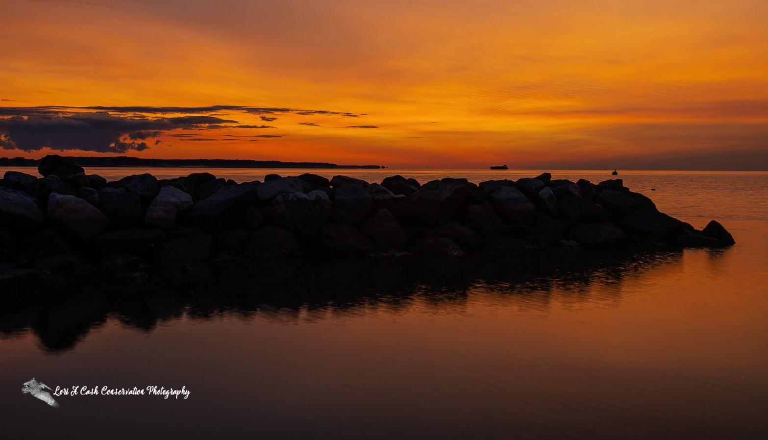 Summer sunrise over jetty rocks on the York River from the view of the beach in Yorktown, Virginia.