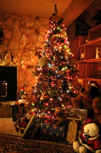This warm scene of Christmas tree and presents doesn't reveal that holidays with depressed family can be taxing and hard.