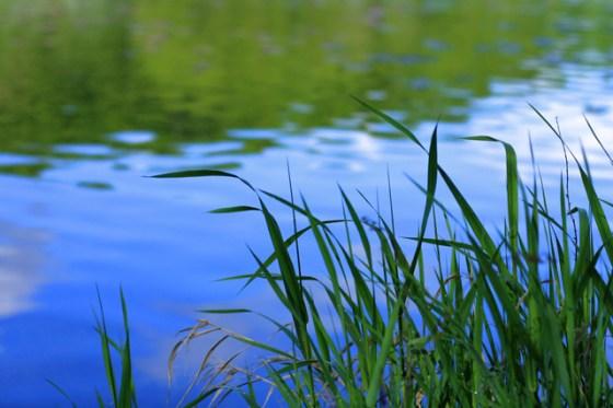 Lily Lake, Stillwater, Minnesota