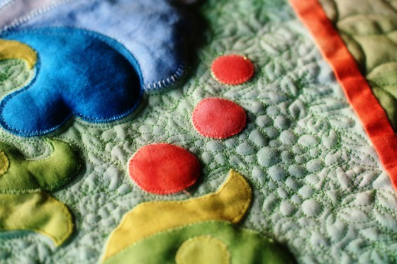 Free Motion Quilting, Applique Detail