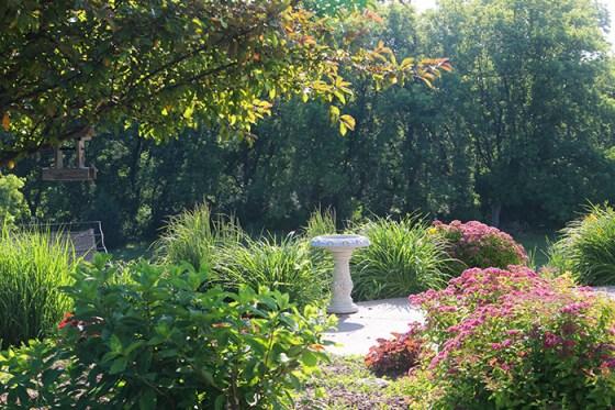 Garden, Bird Bath