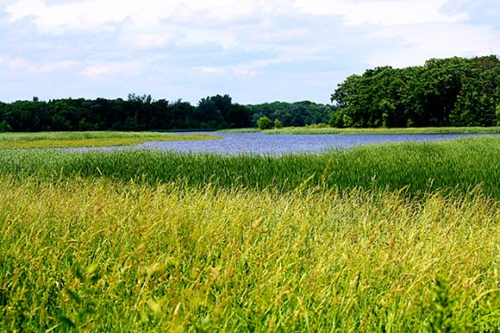 Lake Elmo Park Reserve, Minnesota
