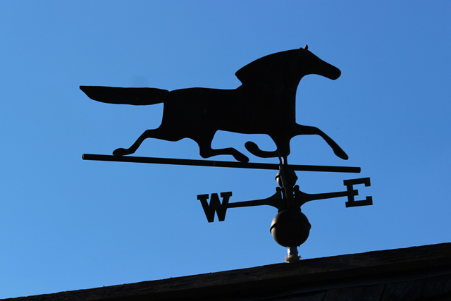 Horse, Weather Vane, Blue sky