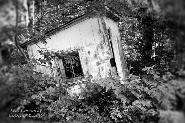 Outhouse, Black and White
