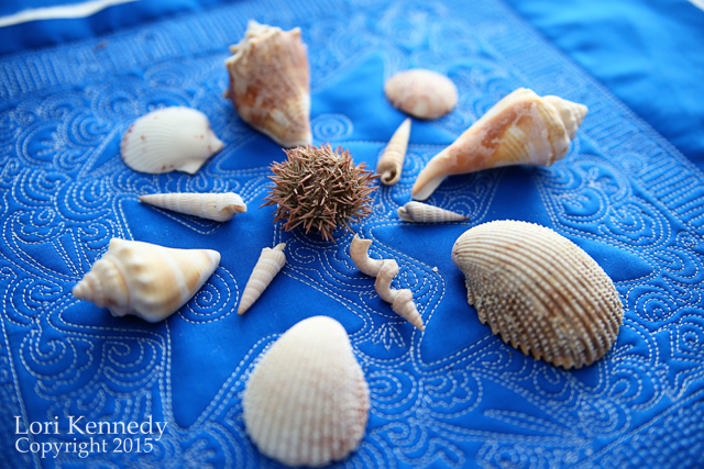 Seashells on Free Motion Quilting