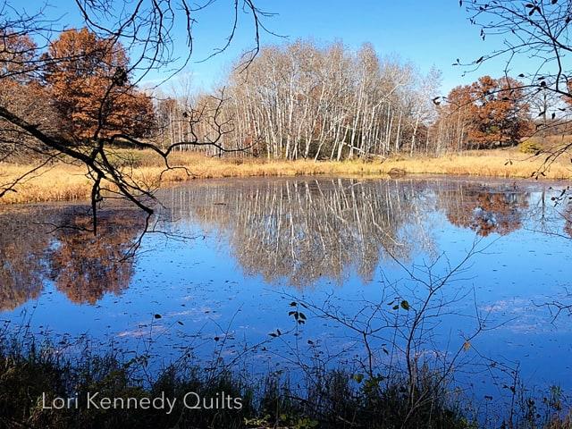 Lake Elmo Park Reserve, Fall Trees