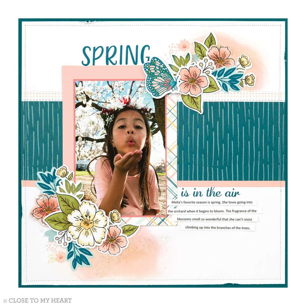 Scrapbooking Stamp and Thin Cuts - Daisy Meadows