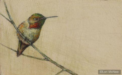 Hummingbird ll