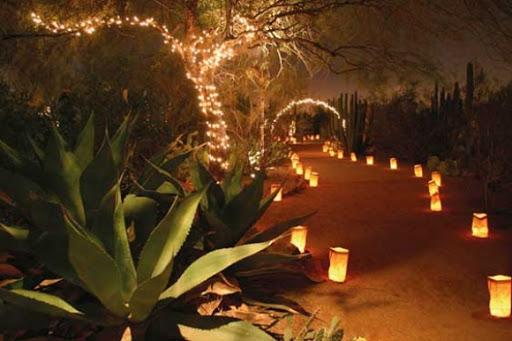 Christmas In The Desert Lorisprayercloset