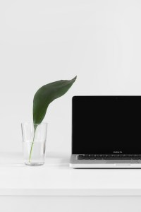 A laptop on a white surface with a glass and a single lily leaf in it.
